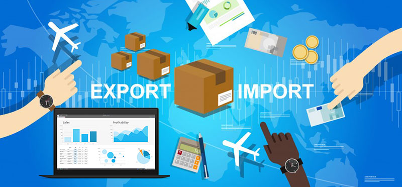 Import / Export and Credit Reporting Options